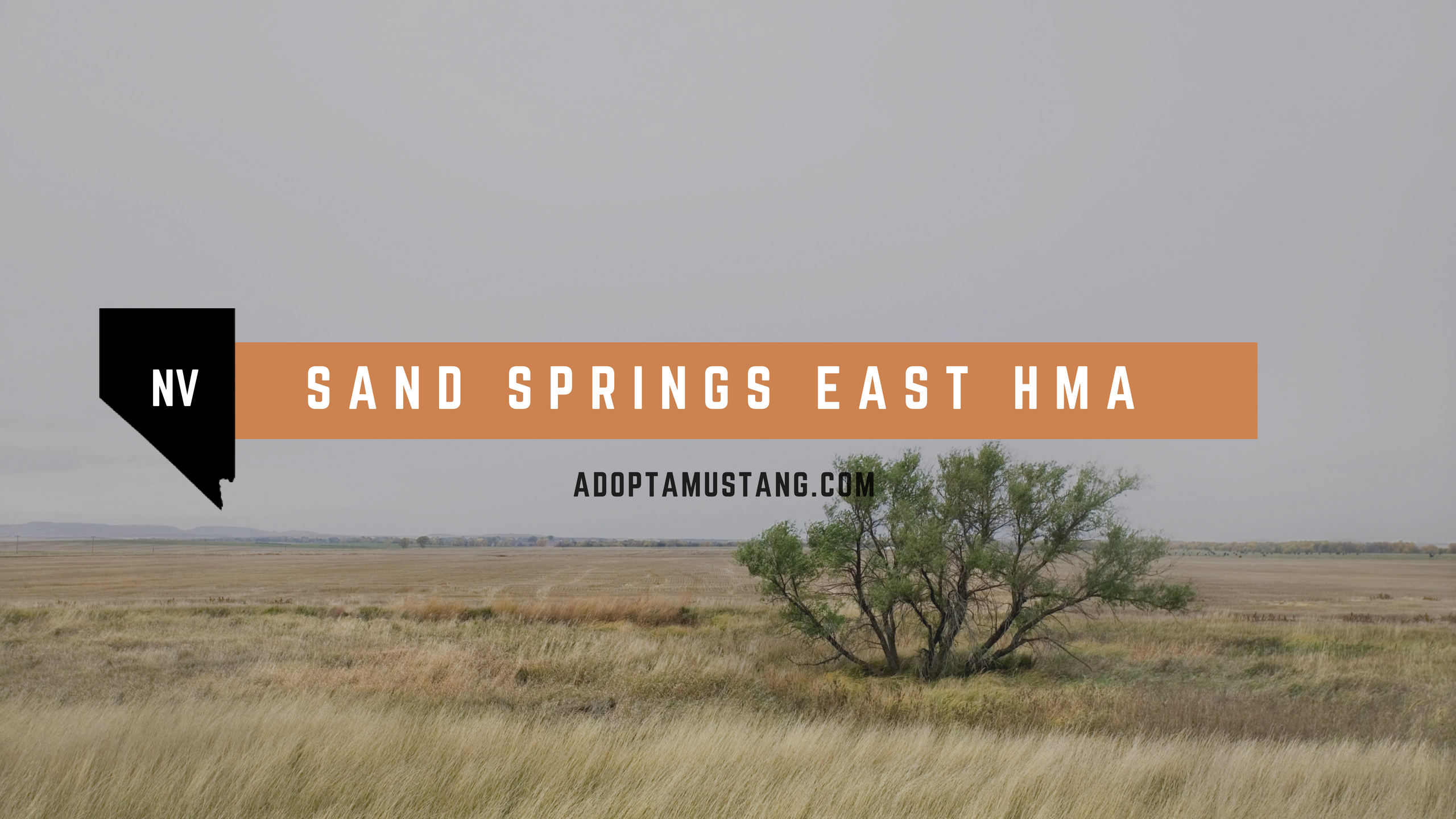 Sand Springs East NV HMA