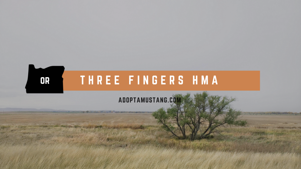 Three Fingers Oregon HMA