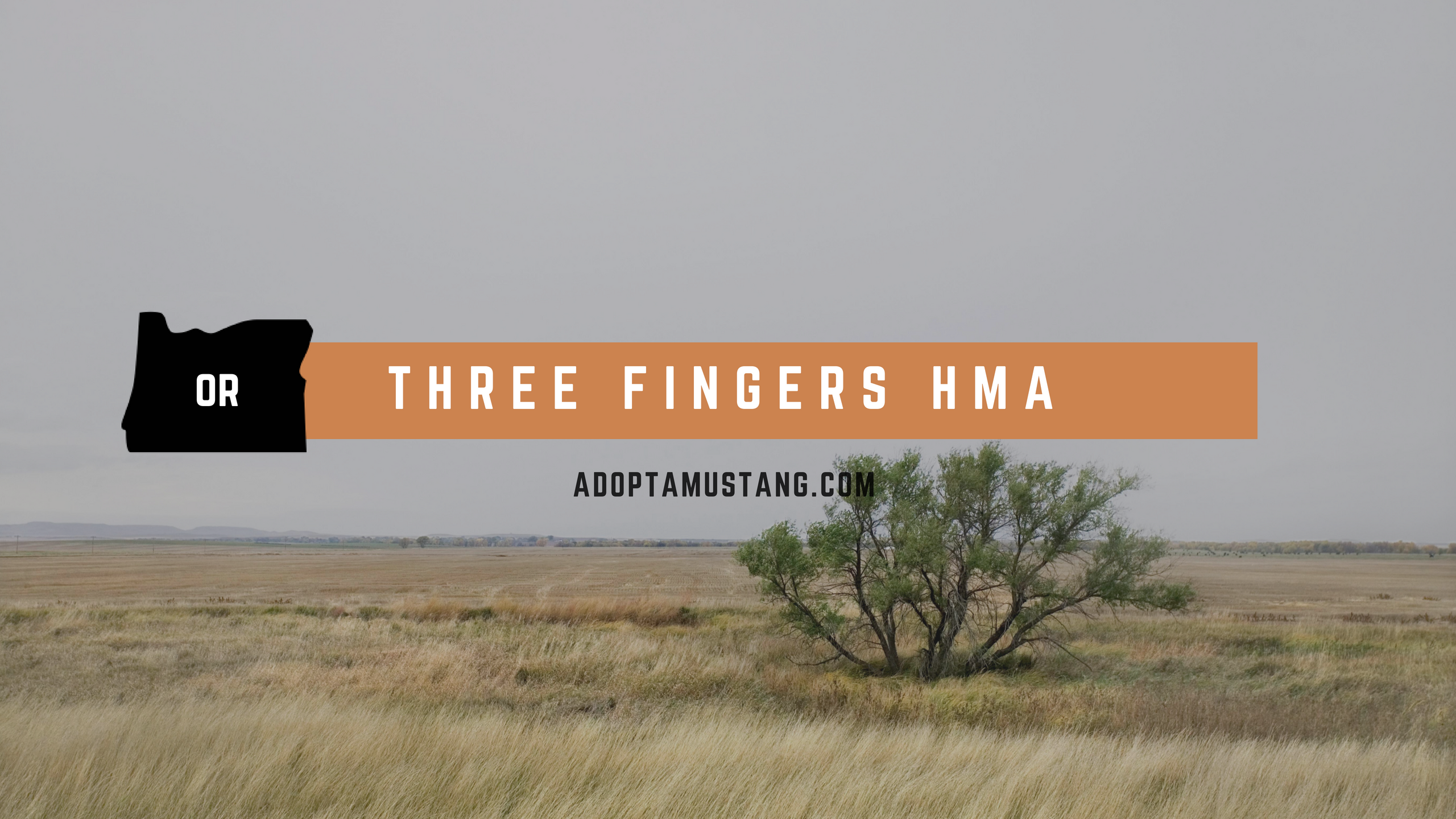 Three Fingers Oregon HMA