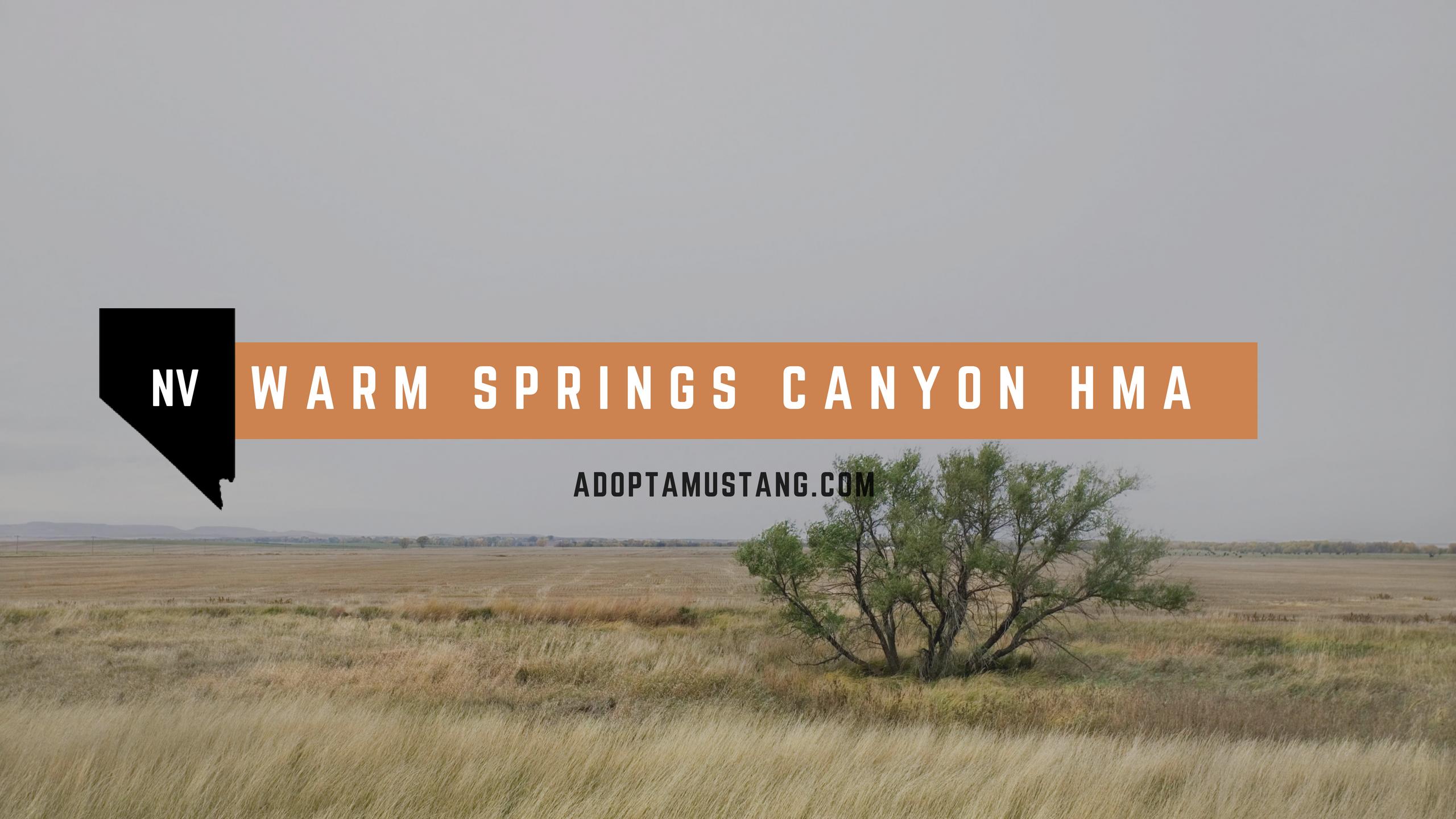 Warm Springs Canyon HMA